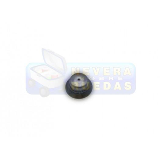 Inyector N45